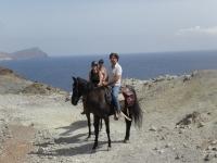 Posando con los caballos