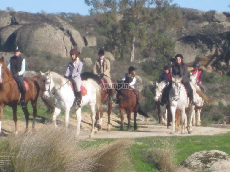 Campamento hípico en Cáceres