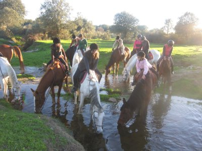 5-day Horse Riding Camp + Activities, Cáceres
