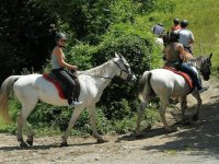 On horseback between the vegetation