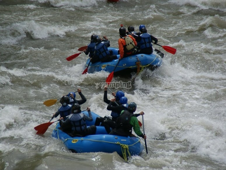 Two rafts rafting