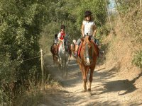 几个孩子骑径骑游在利亚沃尔西