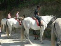 Several children on horseback