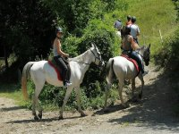 Learn to ride a horse in Lleida