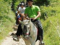 骑马在自然界