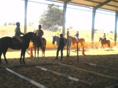 1h horse riding lesson in Cáceres