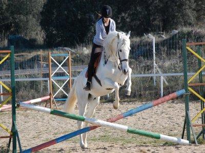 Bono 4课程骑马+ 1免费课程,卡塞雷斯
