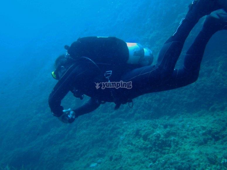 Buscando en el fondo del mar