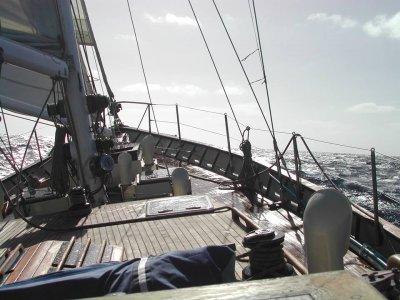 Avante Paseos en Barco