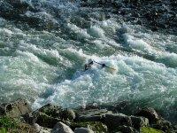 Kayaks in whitewater