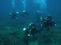 Descubriendo el mundo submarino
