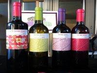 bohedal我们的葡萄酒路线bohedal