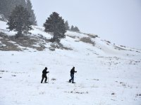 Stroll with snowshoes through the landscapes of Lleida