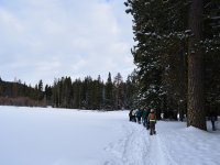 Snowshoe excursions
