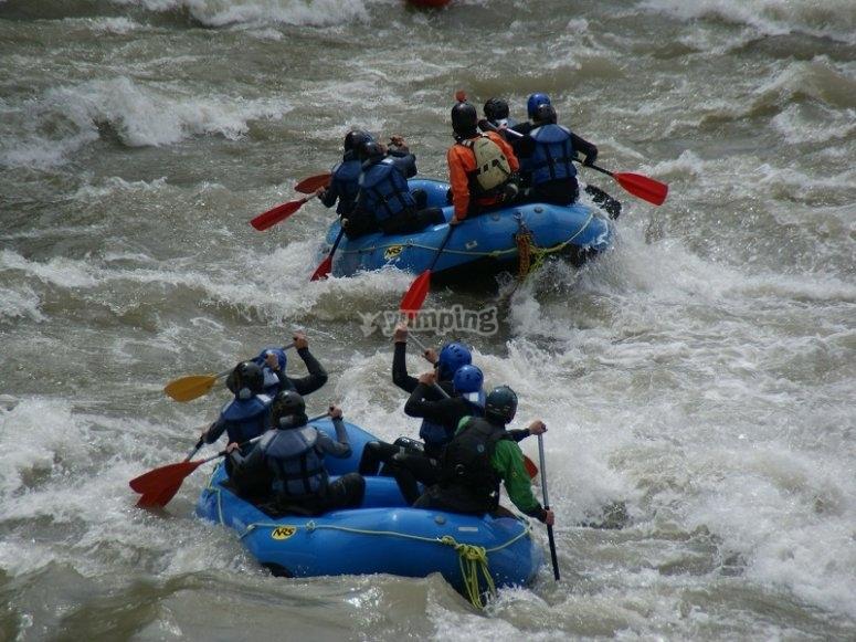 Two rafts rafting
