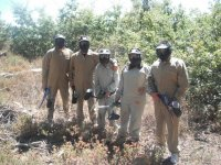 With suits paintball
