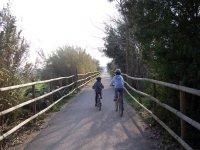 Niños por el camino vallado