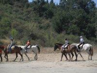 Ruta guiada a caballo