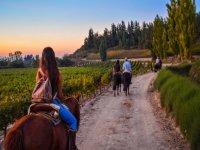 Horseback riding at sunset
