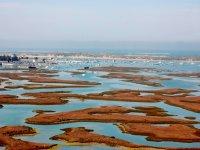 Marismas del Parque natural de la bahía de cadiz
