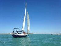 Laberinto de las marismas en Cádiz