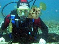 监测海洋动物