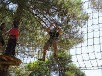 Pasando por la red entre arboles