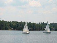 veleros navegando