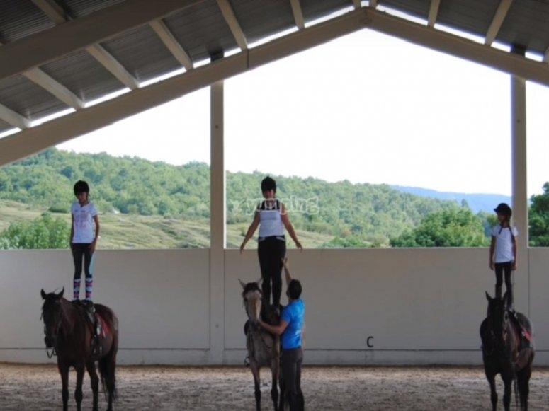 En clase con los caballos