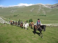 Horse Riding Camp, Álava, 5 Days