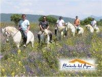 Conociendo Cádiz a caballo