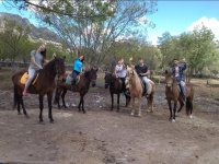 Saying hello from the horses of La Cabrera