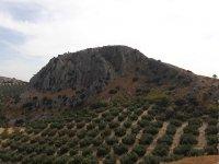 Landscape of Archidona