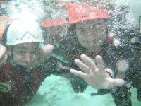 Pictured under water