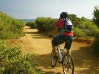 Cyclist through Cádiz landscapes