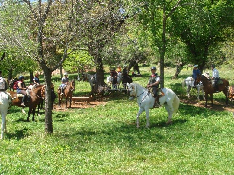 salidas en caballo