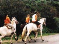 Quiet horse ride