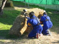 After the straw bale