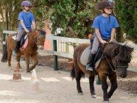 pony routes