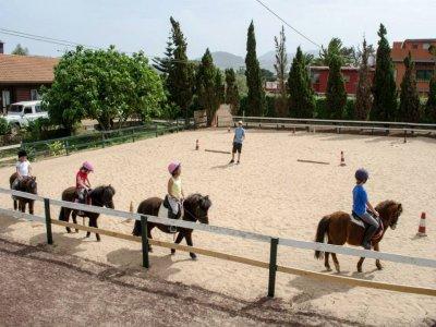 Pony Park Campamentos Hípicos