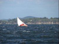 Manejando el fuerte viento