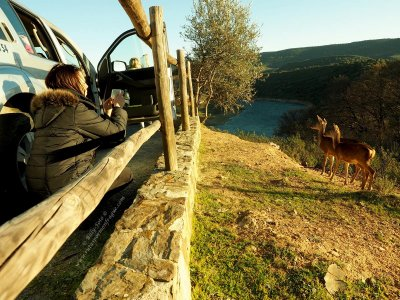 En Ruta Naturaleza y Aventura Safaris