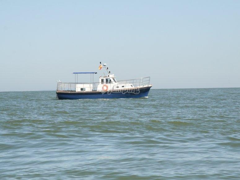 Navegando en las costas de Cádiz