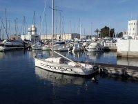 Cocoliso dans le port