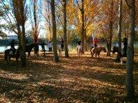 农村骑马课程