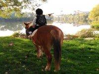 在Tordesillas骑马