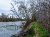 La orilla del río