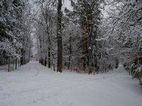Invierno en La Granja