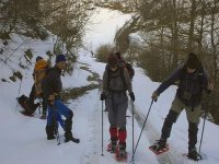 Putting on the snowshoes