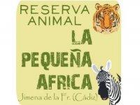 La Pequeña África Safaris